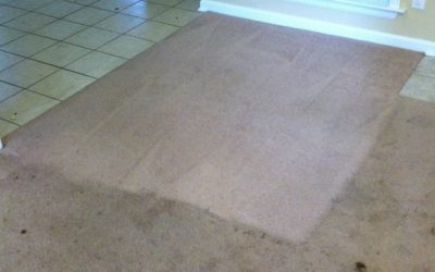 Carpet Cleaning Prattville, AL